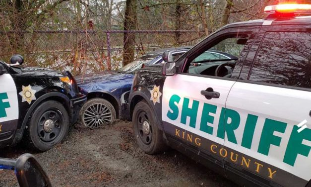Police stop domestic violence assault, chase, capture suspect near White Center